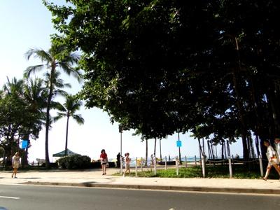 20100127ワイキキビーチ.jpg